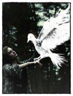 Η ψυχή μου είναι αετού